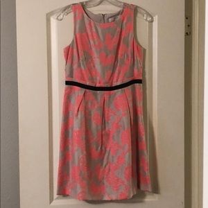 Loft Dress New with Tags Size 2P